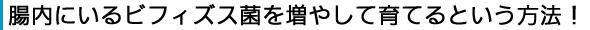 oligo-text01